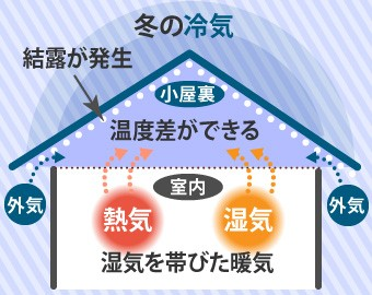 冬は室内と小屋裏の温度差によって結露が発生