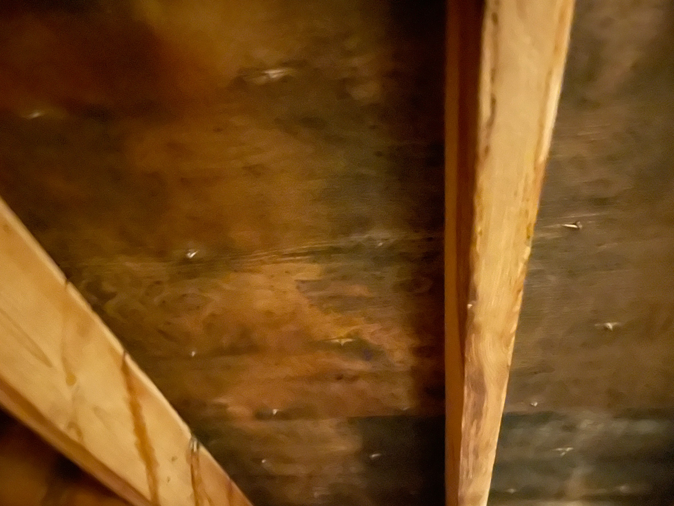 屋根裏 雨染み