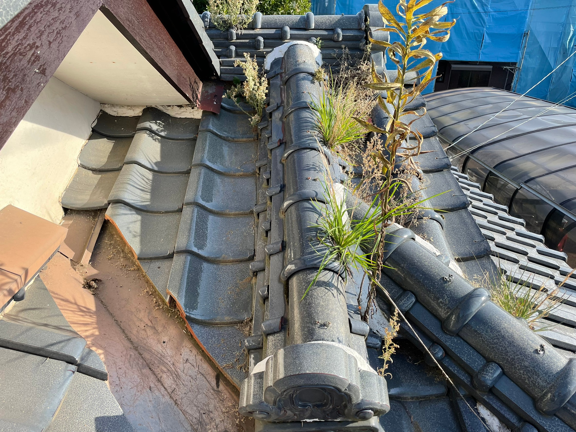 瓦屋根の雨漏り補修工事