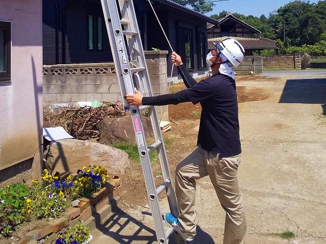美浦村で倒木による瓦屋根破損で現場調査のご依頼
