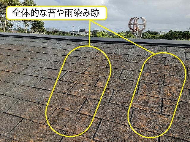シングル屋根 苔 雨染み