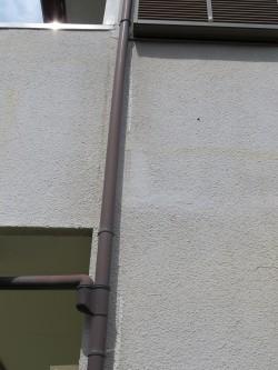 外壁はチリ1