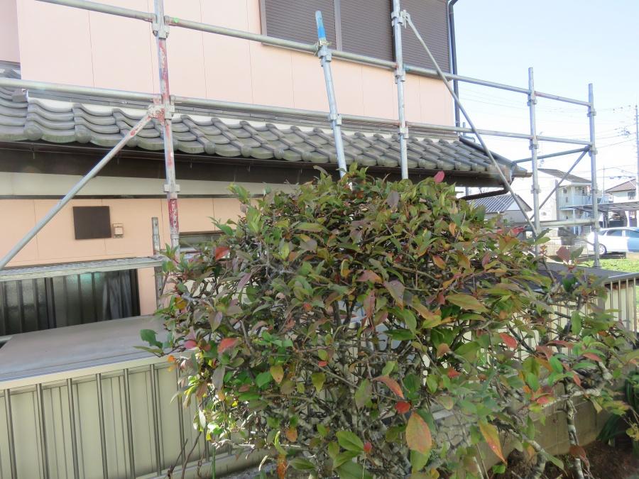 下屋根の瓦を撤去する足場