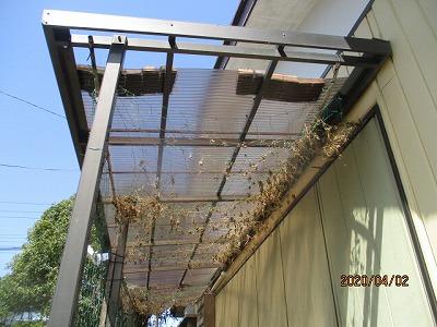 ベランダの屋根波板交換