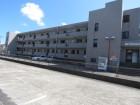 建物の全景写真