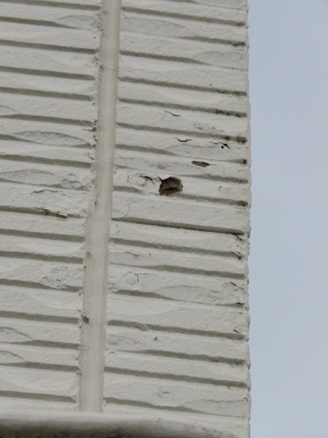 外壁剥がれ被害