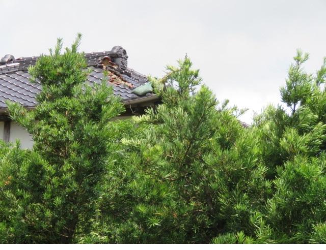 神栖市から屋根瓦の葺き直し依頼を承りその調査にお伺いしました