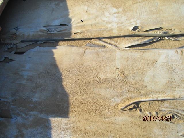 防水シート被害