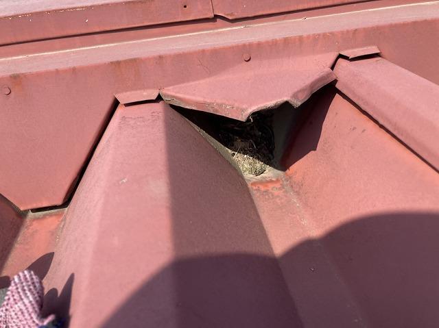 屋根板金の水侵入口
