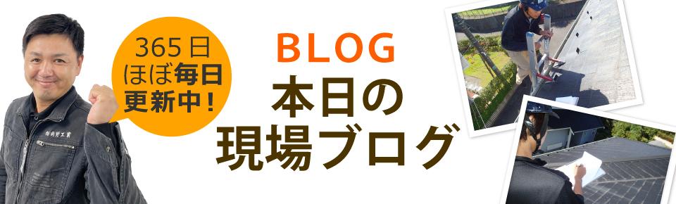 土浦市、つくば市、かすみがうら市やその周辺エリア、その他地域のブログ