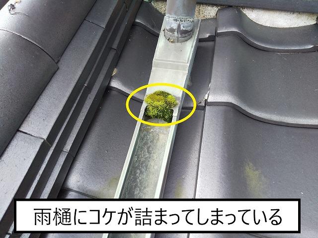 鉾田市 蔵屋根 雨樋の詰まり
